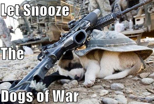 Let Snooze the Dogs of War