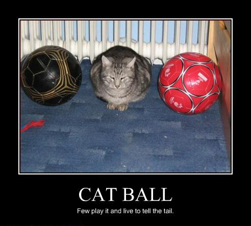 Cat Ball, few play it and live to tell the tale.