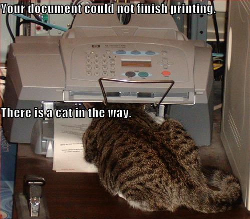 Your document could not finish printing, there is a cat in the way.