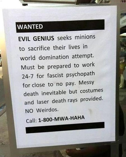 Evil genius seeks minion ... what could go wrong?