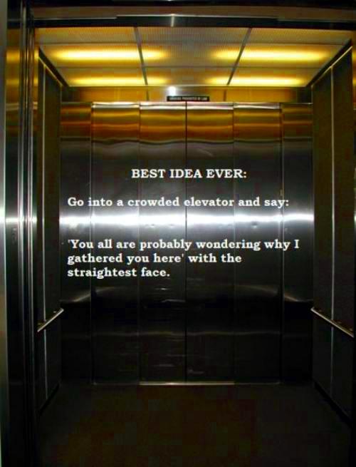 Best idea ever?