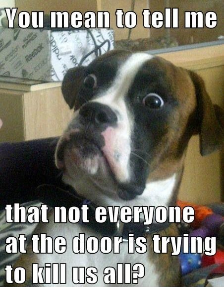 Not everyone who knocks at the door is trying to kill us all?