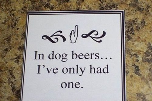 In dog beers ...