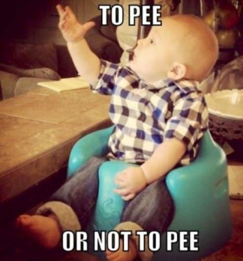 To pee, or not to pee ...