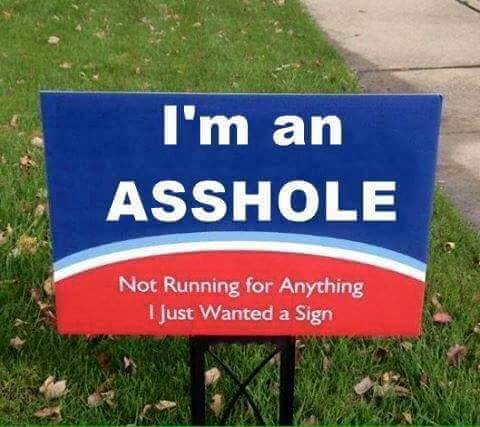 Election Yard Sign